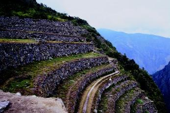 The incas thinglink for Terrace farming definition